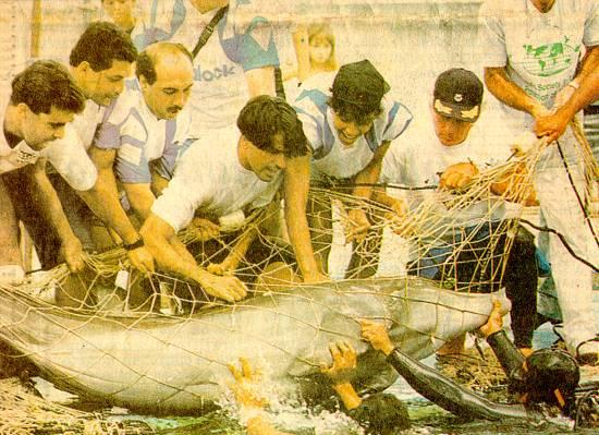 Outra foto do mesmo dia (fonte: site Novo Milenio)