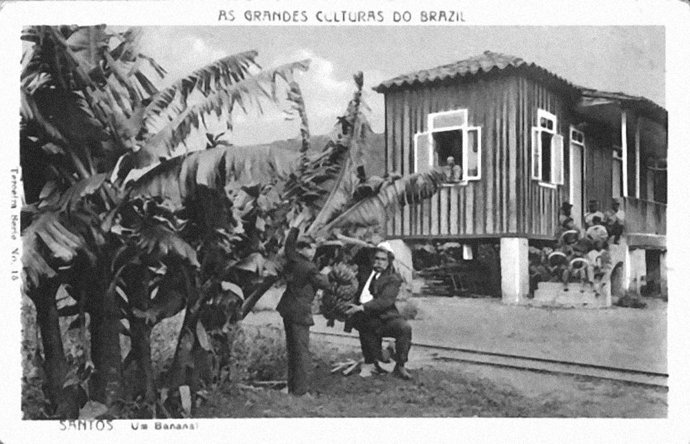 Os cartões postais da época retratavam a economia regional.