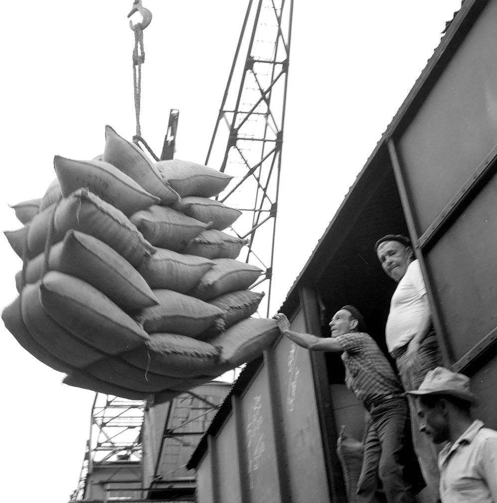 O trabalho no porto de Santos foi bastante registrado pelo correspondente da CBS.